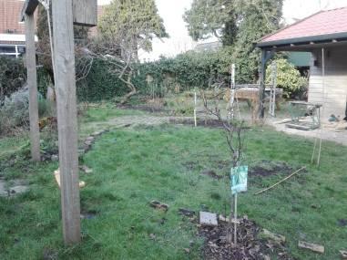 Tussenfase - vanaf tuinpoort